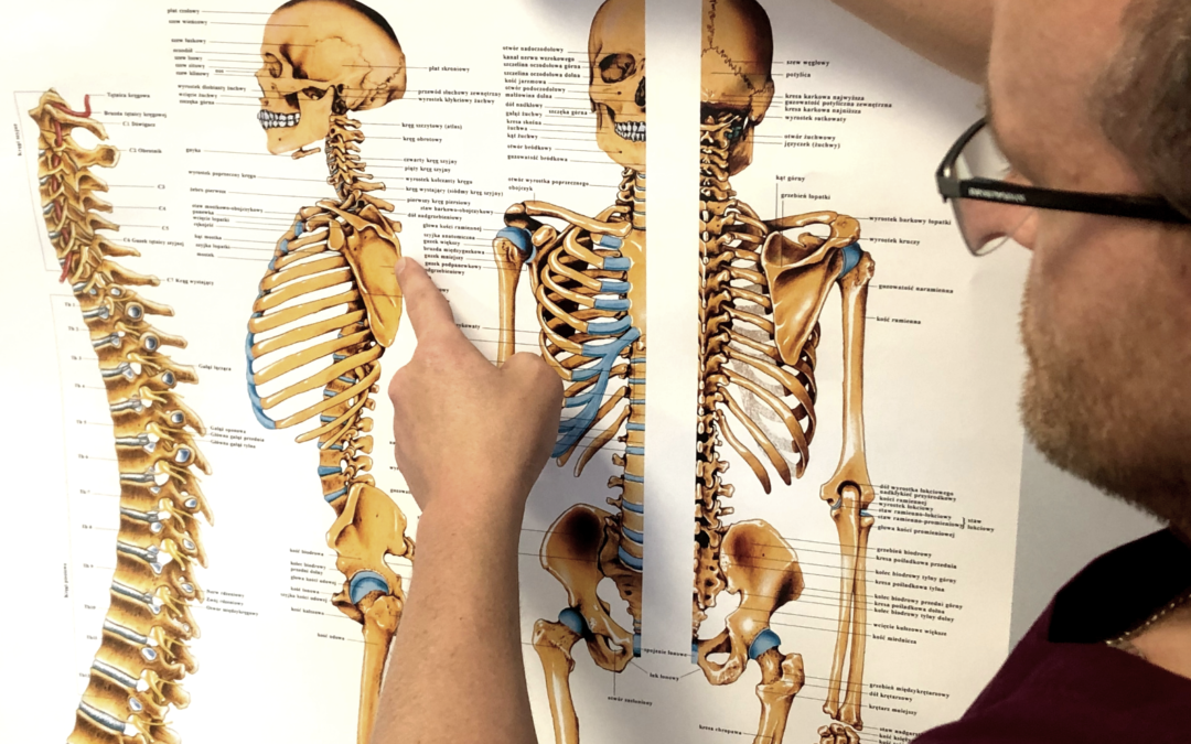 Kryteria wyznaczania prawidłowej postawy ciała